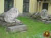 Лев 245